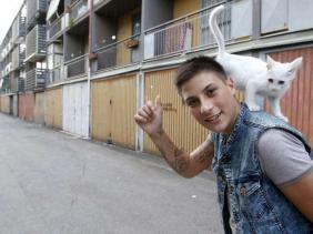 storia di un ragazzo che ama i gatti