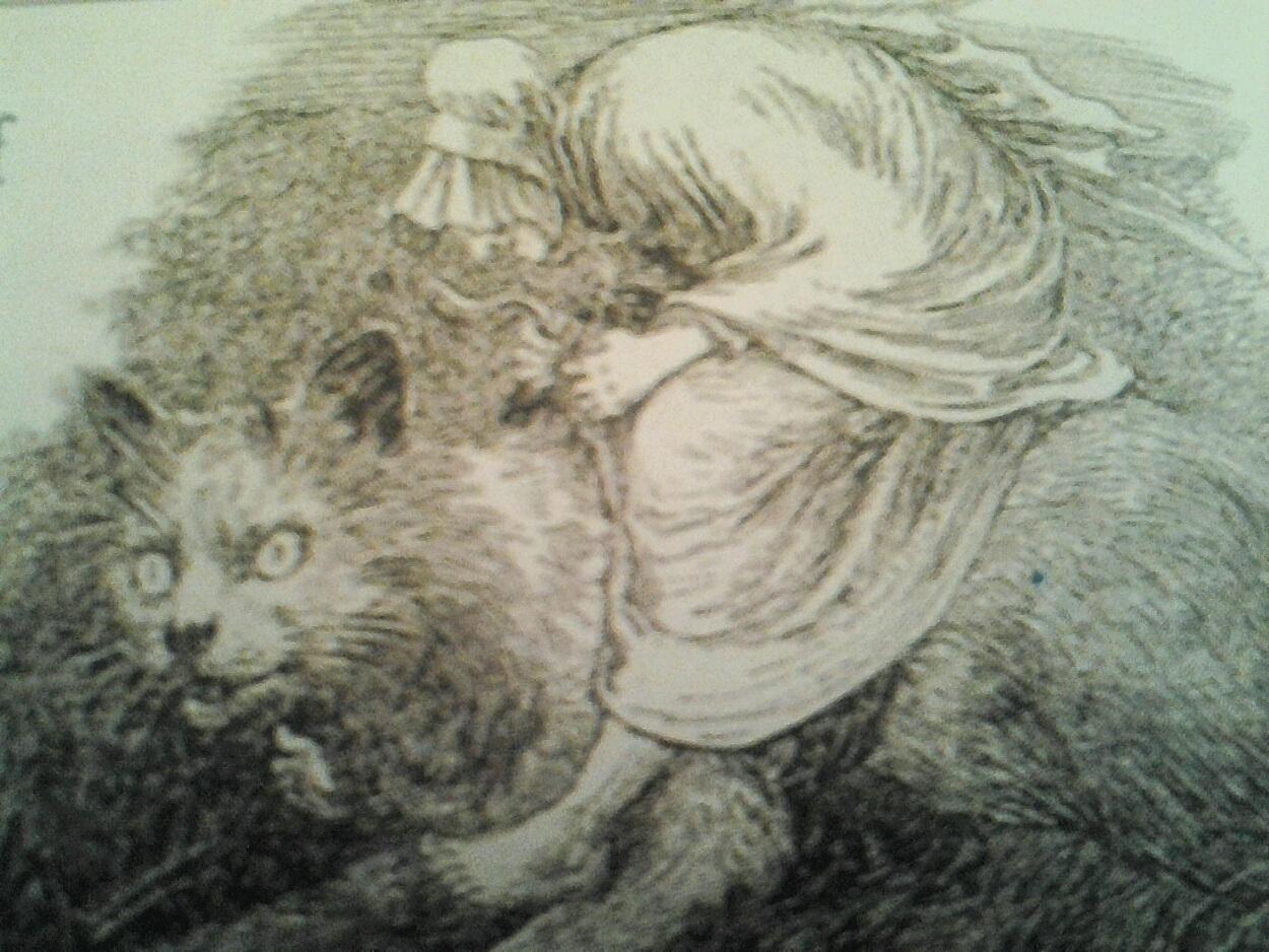 gatto e donna