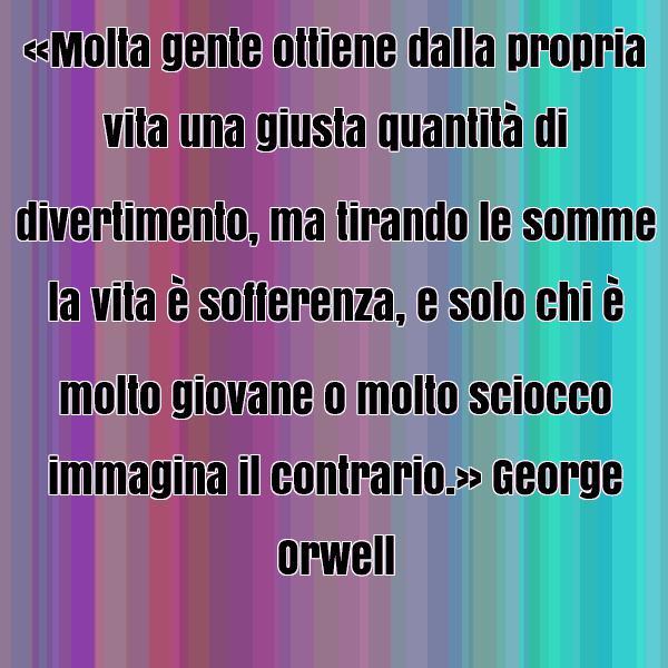 orwell 14