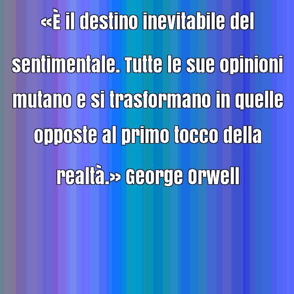 orwell 17
