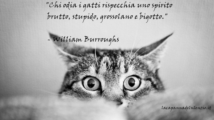 burroughs 13