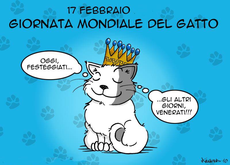 festa gatto 2