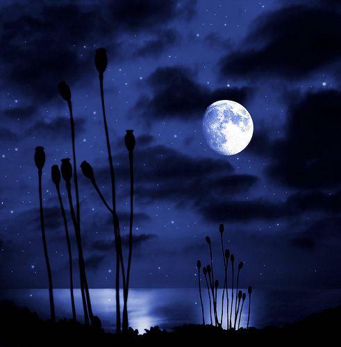 Pensieri, poesie e citazioni sulla luna