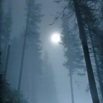 pensieri, aforismi e citazioni sulla luna