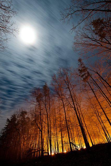 La luna, pensieri, citazioni e aforismi