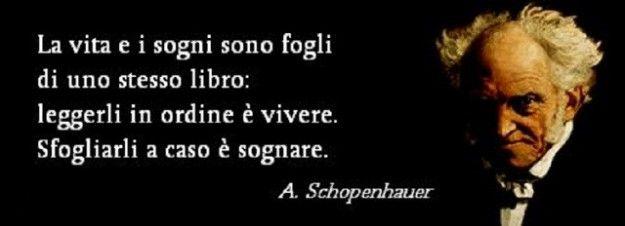 schopenhauer 12