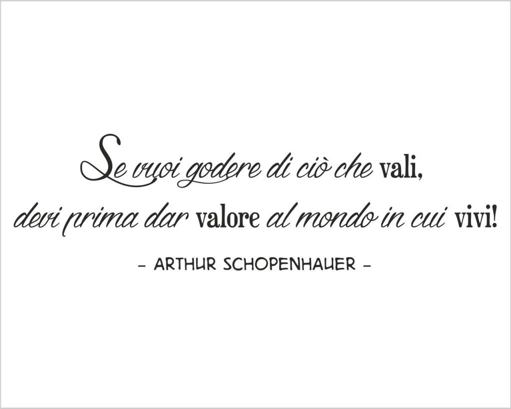 schopenhauer 15