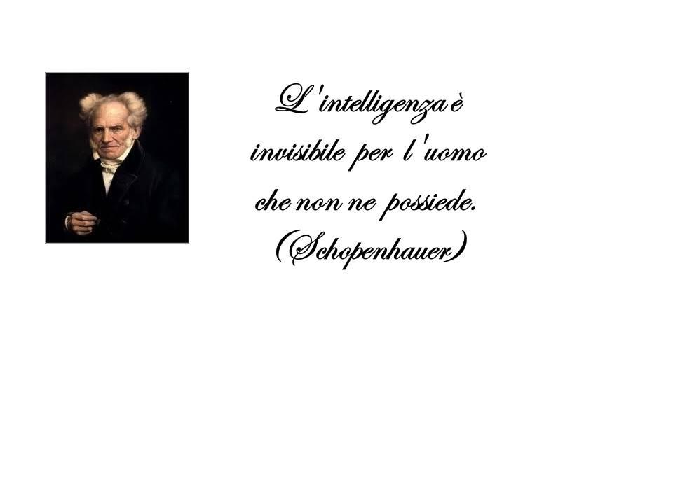 schopenhauer 17