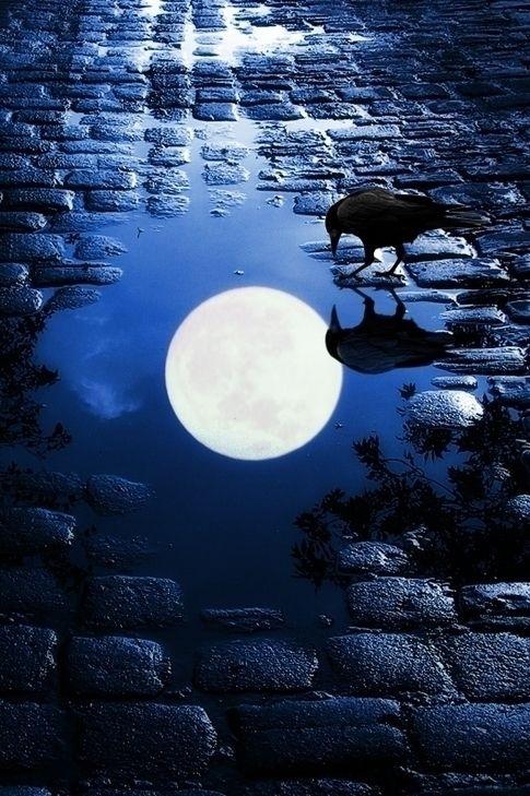 pensieri e citazioni sulla luna