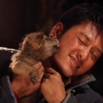 L'Ultimo Lupo ( Wolf Totem), recensione film