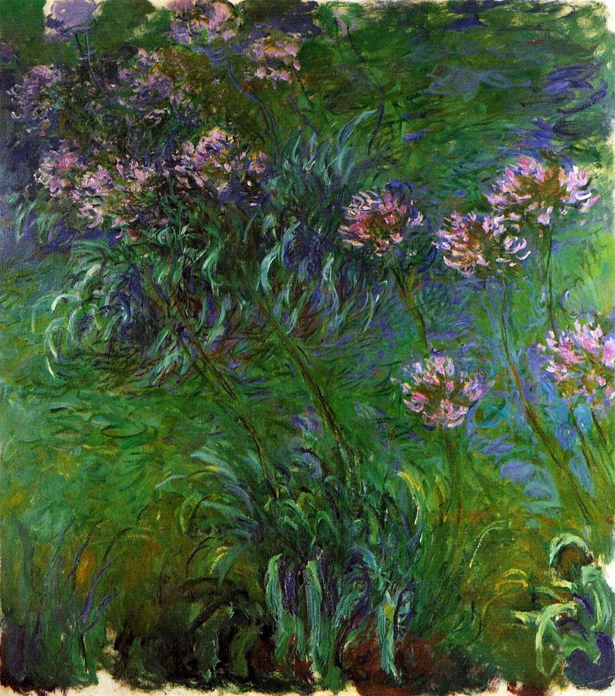 """""""Agapanthus"""", 1914-1926"""