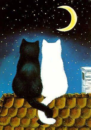 """Il silenzio è la gentilezza dell'universo. Abdelmajid Benjelloun """"The Cat and the Moon"""" by Anna Hollerer"""