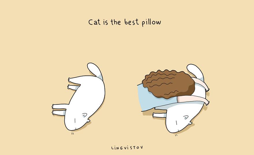 """""""Il gatto è il miglior cuscino."""""""