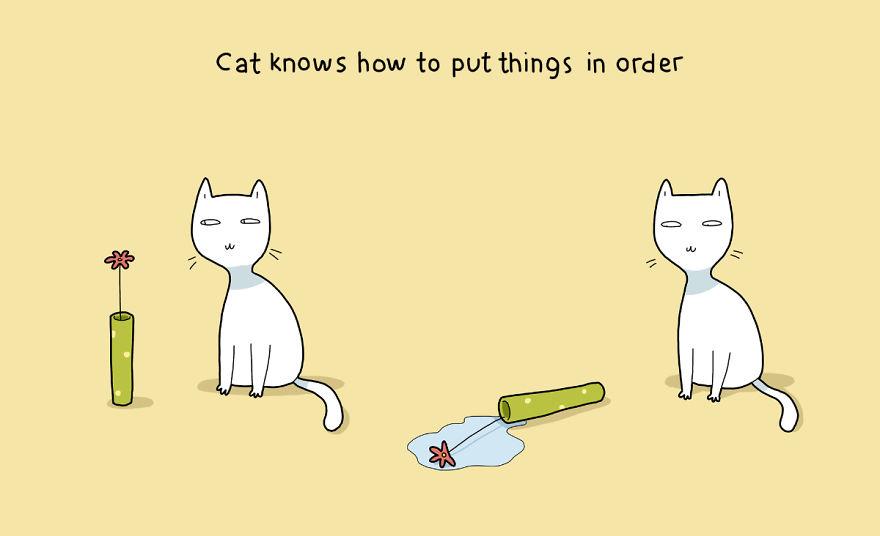 """""""Il gatto sa come mettere le cose in ordine."""""""
