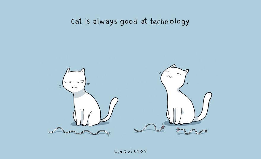 """""""Il gatto è sempre bravo nella tecnologia."""""""