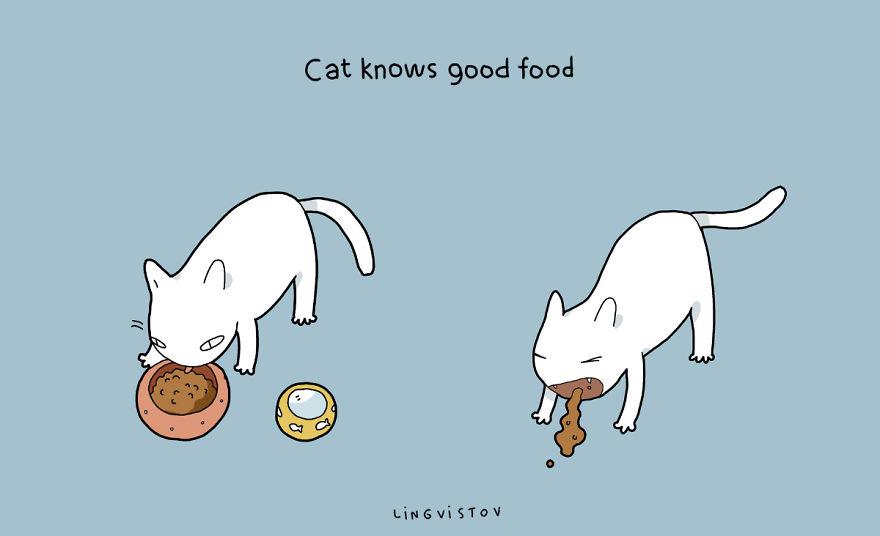 """""""Il gatto conosce il buon cibo."""""""