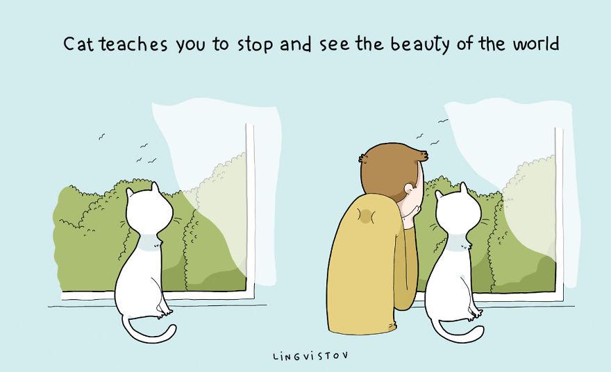 """""""Il gatto t'insegna a fermarti a guardare la bellezza del mondo."""""""
