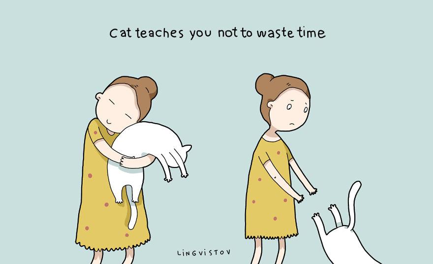 """""""Il gatto t'insegna a non sprecare tempo."""""""