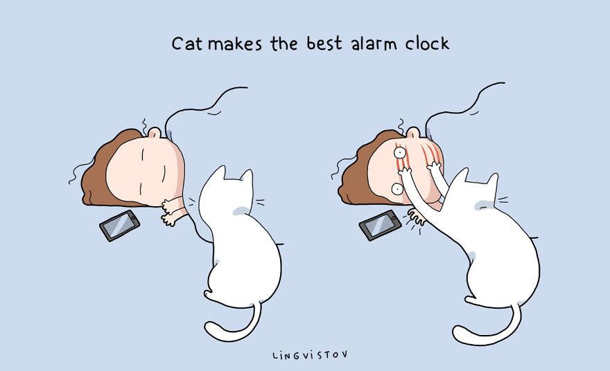 """""""Il gatto rende migliore la tua sveglia"""""""