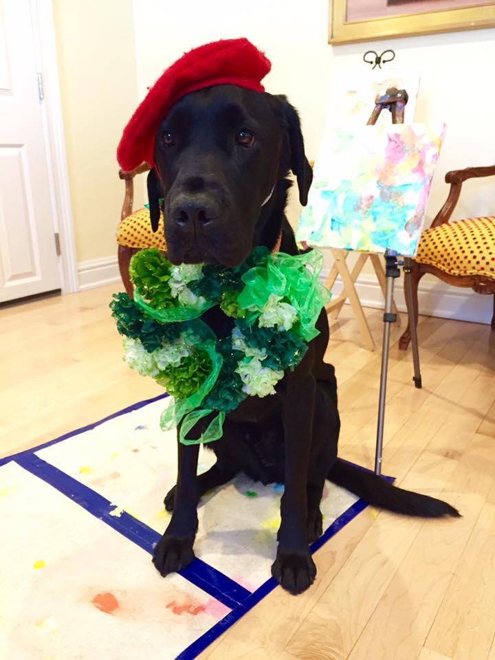 """Una foto di """"Dog-Vinci"""" il giorno di San Patrizio."""