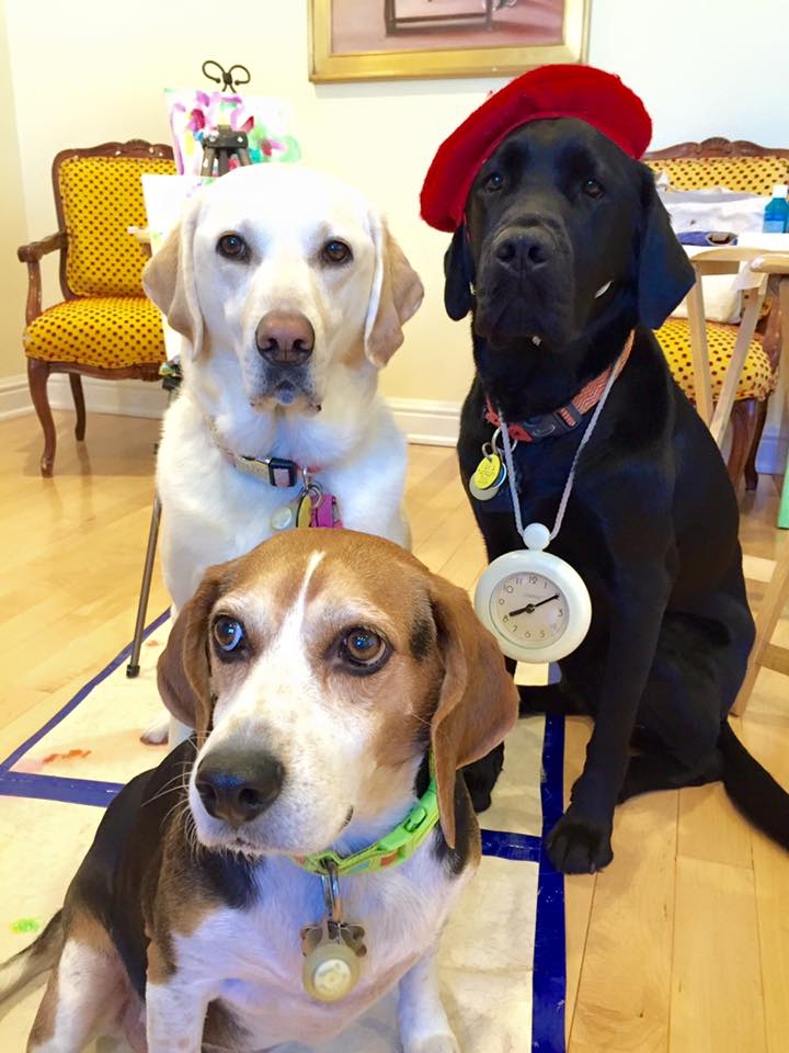 DogVinci con i suoi amici, Miss YaYa e Tommy TuTu.