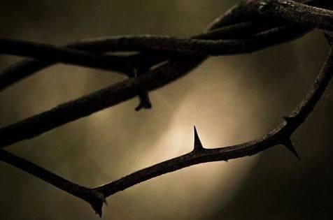 L'odio è la catena più grave insieme e più abietta, con la quale l'uomo possa legarsi all'uomo. Ugo Foscolo, 6 febbraio 1778 Immagine reperita nel web