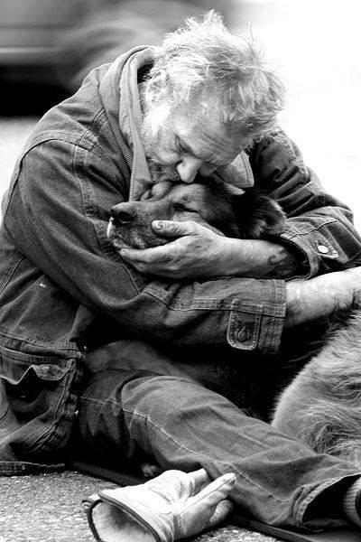 """Un cane non se ne fa niente di macchine costose, case grandi o vestiti firmati. Un bastone marcio per lui è sufficiente. A un cane non importa se sei ricco o povero, brillante o imbranato, intelligente o stupido. Se gli dai il tuo cuore, lui ti darà il suo. Di quante persone si può dire lo stesso? Quante persone ti fanno sentire unico, puro, speciale? Quante persone possono farti sentire straordinario? Tratto dal film """"Io e Marley"""". Immagine reperita nel web"""