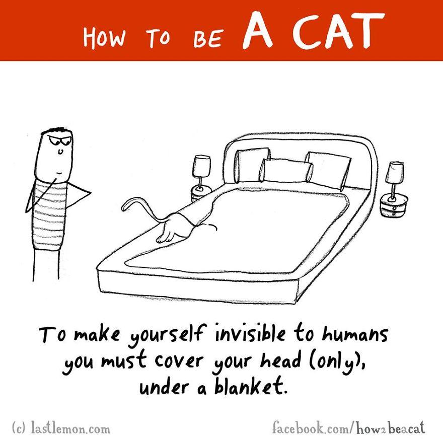 """""""Per renderti invisibile agli umani devi nascondere solo la testa sotto la coperta."""""""