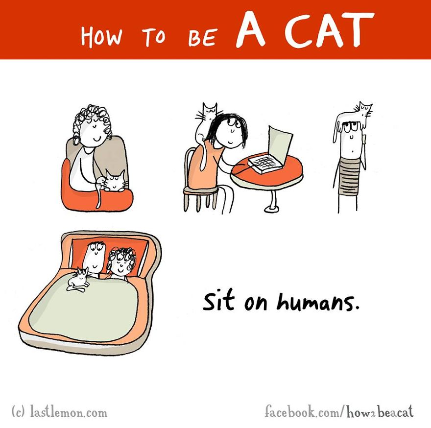 """Siediti sopra gli umani""."