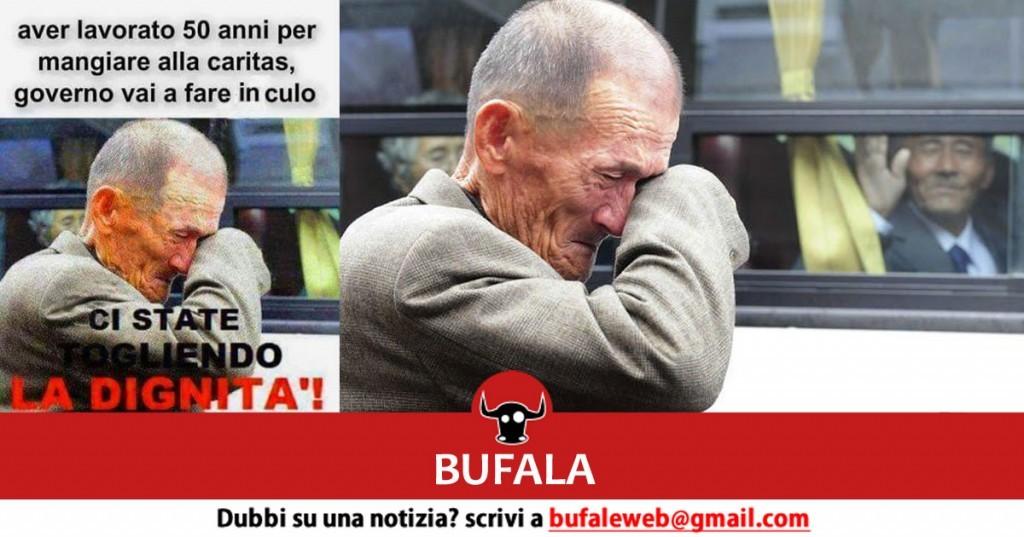 bufala 20