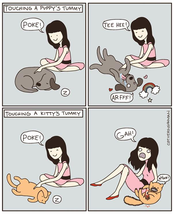 Toccare la pancia di un cane. Toccare la pancia di un gatto.