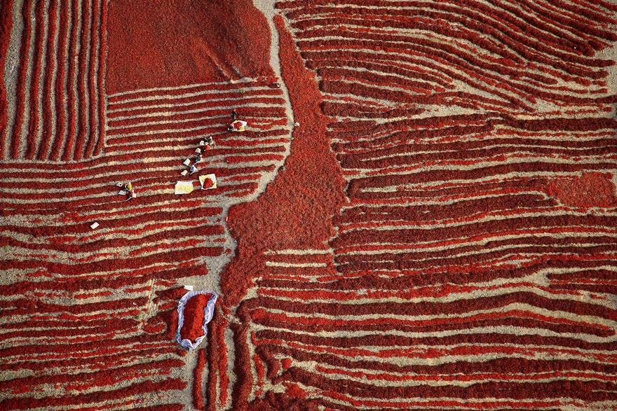 """""""Harvest Season"""" di Hanbin Wang. Ottobre, la stagione del raccolto dei peperoncini rossi che gli agricoltori, dopo averli raccolti, li lasciano asciugare al sole. Quando sono asciutti i peperoncini vengono venduti. Questa foto è stata scattata da una prospettiva aerea unica, quando i contadini erano impegnati con la raccolta."""