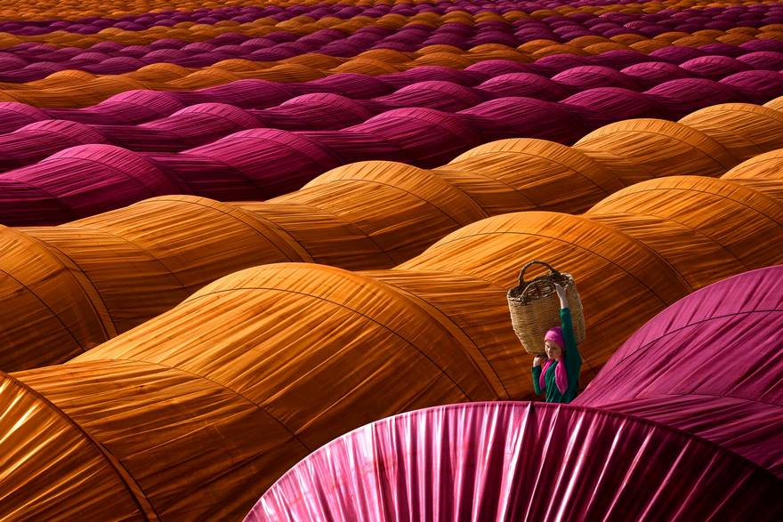 """""""Strawberry Greenhouses"""" di Leyla Emektar. Una raccoglitrice di fragole passeggiate tra le colorate serre vicino Nazilli, nella provincia turca di Aydın."""