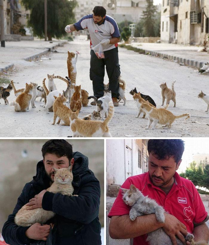"""In un'Aleppo devastata dalla guerra e assurta a simbolo dell'indifferenza del mondo, molti sono stati i suoi abitanti in fuga. Ma un uomo, our avendo la possibilità di andar via e lasciare quell'inferno che si consumava dinnanzi ai suoi occhi, ha deciso di restare. Soprannominato """"Il gattaro di Aleppo"""", Mohammad Alaa Aljaleel aiuta ogni giorno il suo popolo martoriato e sfama i randagi che affollano quel che resta della sua città."""