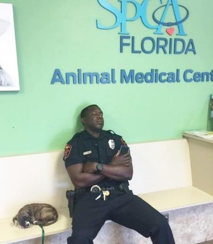 Un poliziotto trova una cucciola randagia e le resta accanto tutta la notte, nonostante avesse finito il suo turno di lavoro, per assicurarsi che stesse bene.