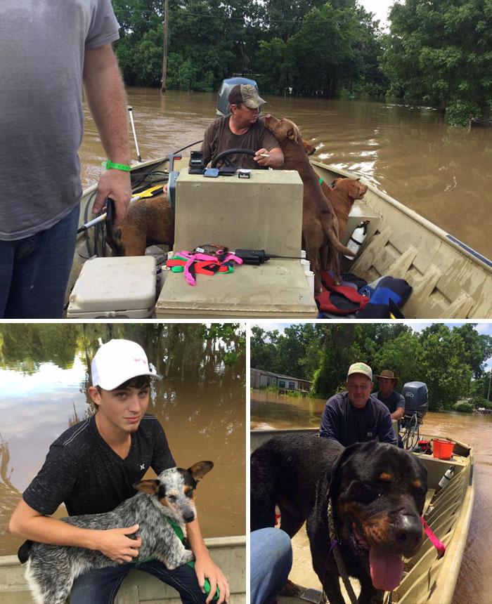 Un uomo e il proprio figlio hanno salvato una trentina di cani abbandonati durante l'alluvione nella contea di Brazoria, Texas.