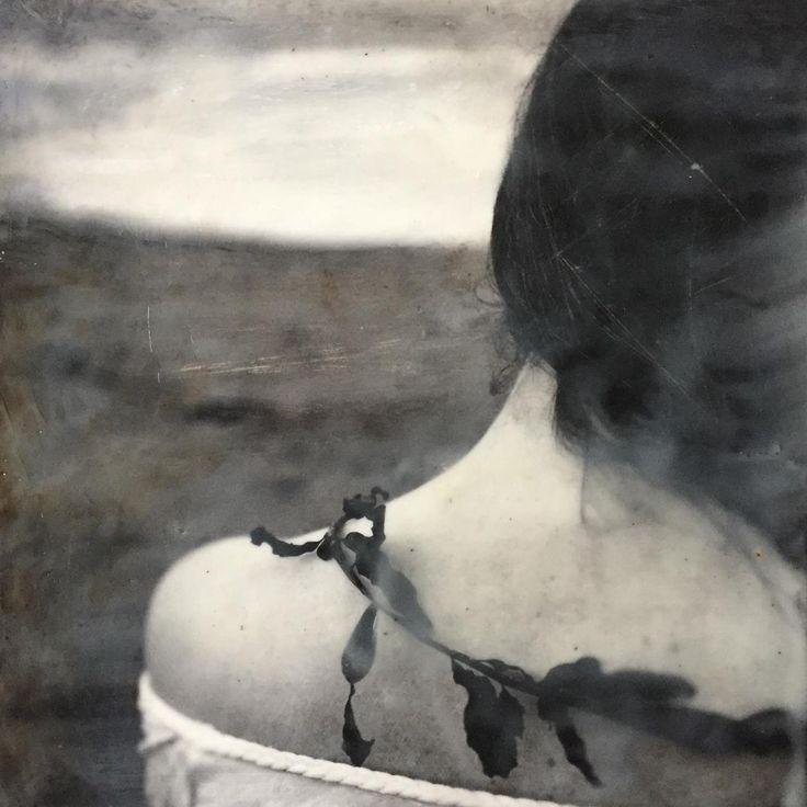 """Sapessero che disarmato è il cuore dove più la corazza è alta tutta borchie e lastre, e come sotto è tenero l'istrice. - Nelo Risi (""""Seaweed"""", Kathryn Oliver)"""
